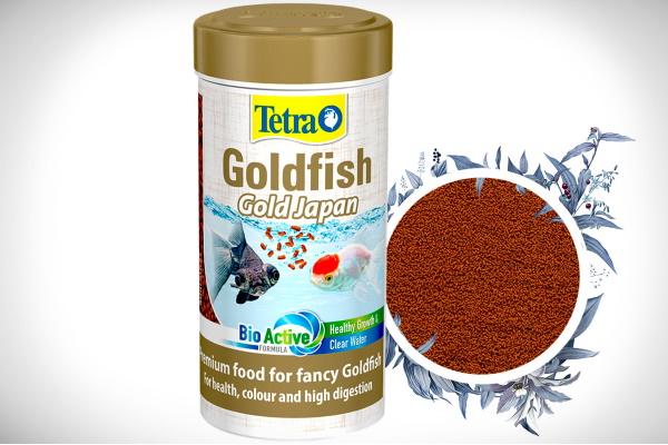 Goldfish Gold Japan